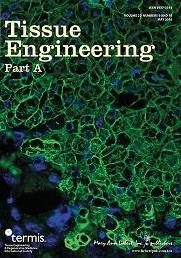 Tissue Engineering | Regenerative Medicine at the McGowan