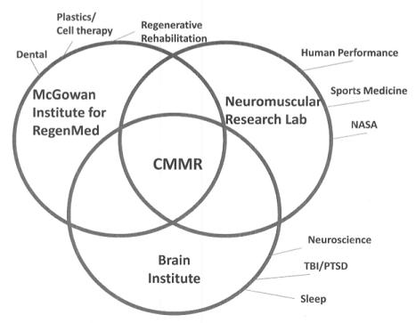 cmmr partnerships