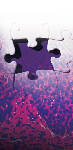 CIRM-Puzzle