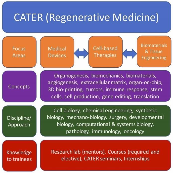 cater graphic