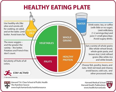 4b harvard healthy plate
